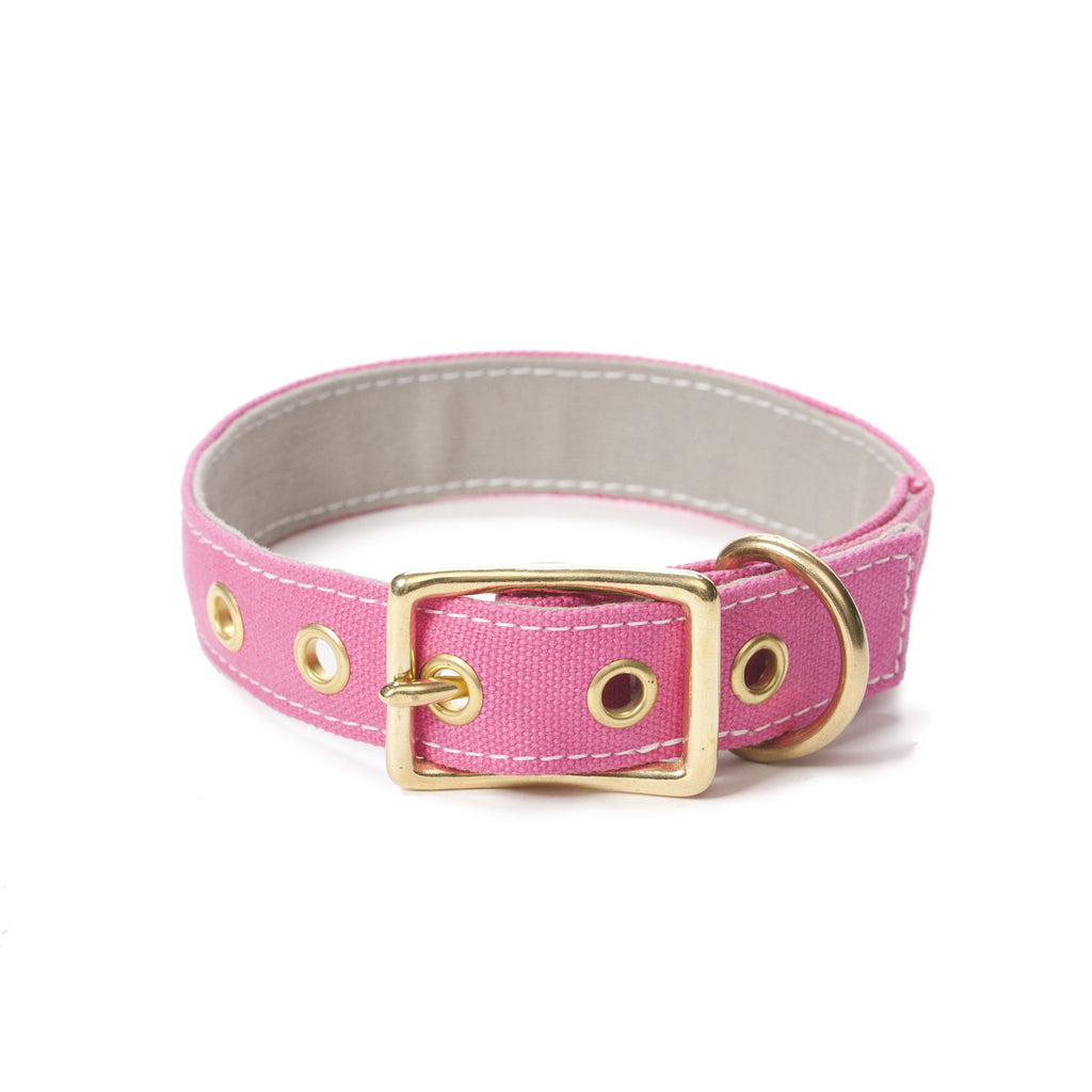 Canvas Collar Pink/Light Grey