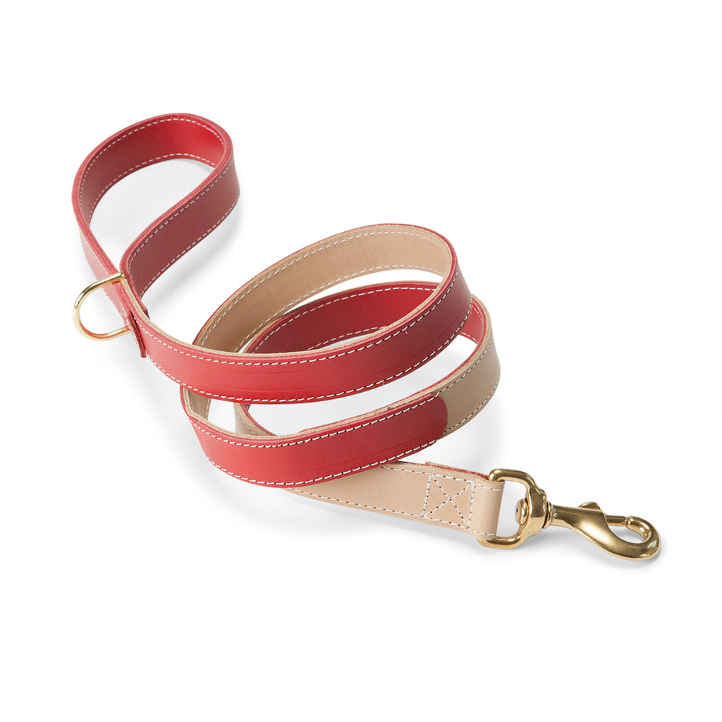 Leather Lead in Red & Nude
