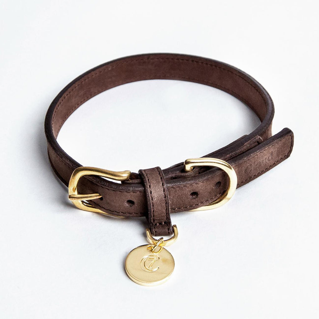 Nubuck Collar in Mocca from Cloud 7