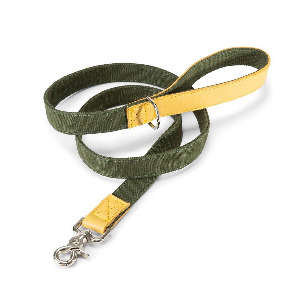 Leather Canvas Lead in Olive & Yellow