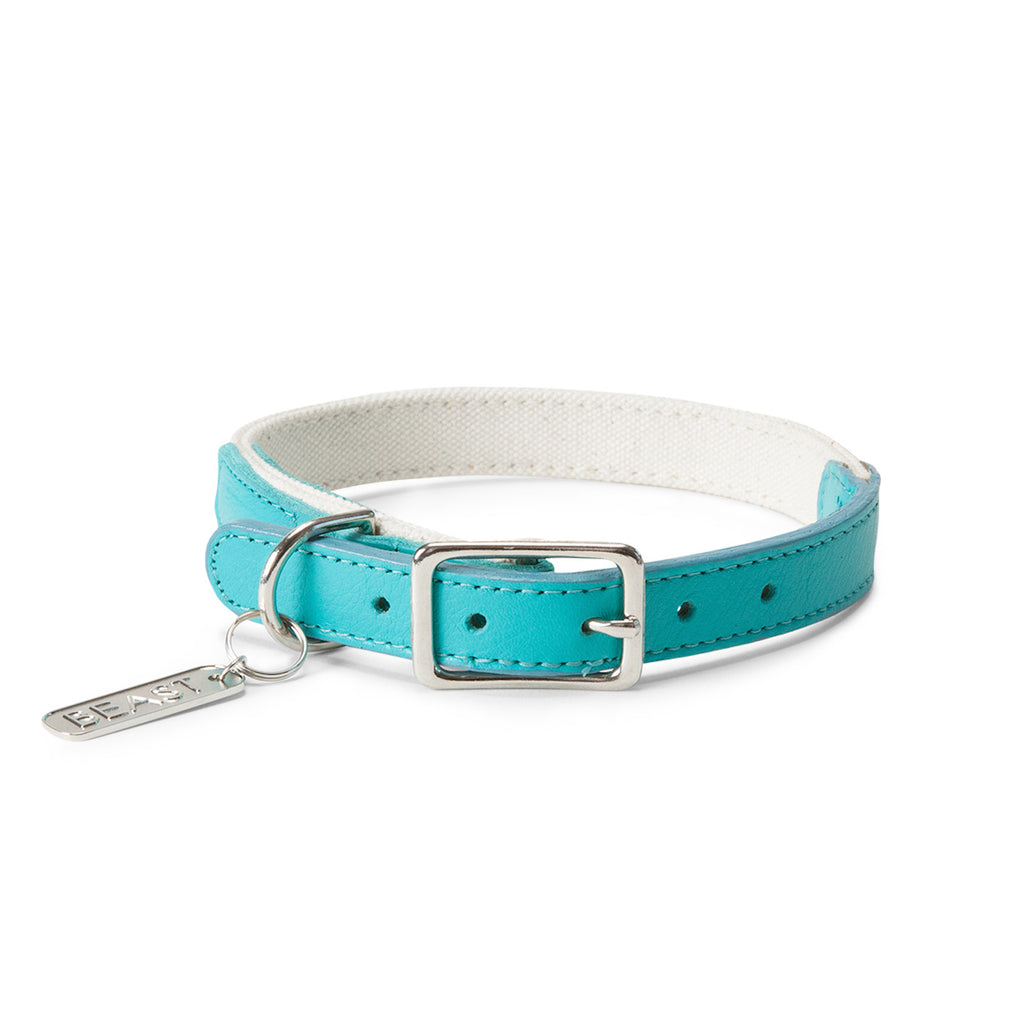 Leather Canvas Collar in Natural & Aqua