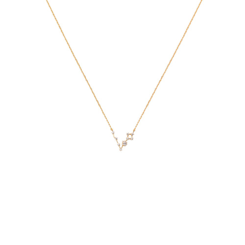 Pisces Constellation Necklace - Front & Company: Gift Store
