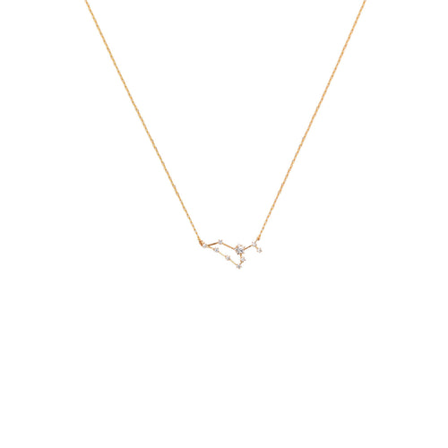Leo Constellation Necklace - Front & Company: Gift Store