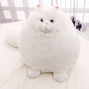 Mr. Persian | Cat Plush Toy