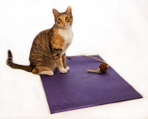 Feline Yogi Cat Mat | Purple