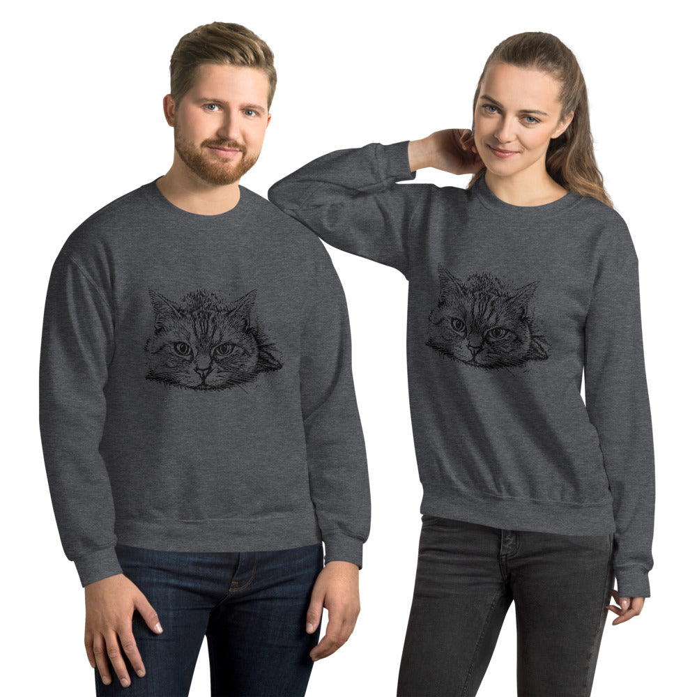 """This Cat"" 