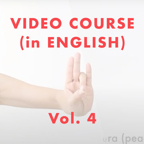Odissi DANCE LESSON VIDEO COURSE