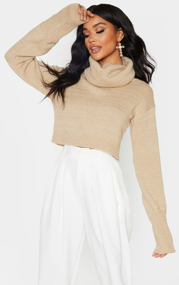 Camel Roll Neck Cropped Jumper - fashion.type.com