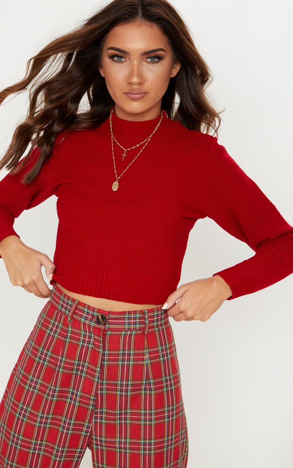 Red Ribbed Cropped Knitted Jumper. Knitwear - fashion.type.com