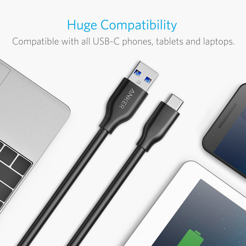 PowerLine 10ft USB-C to USB 3.0 cable (10ft)