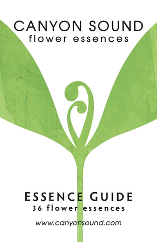 Canyon Sound Essence Guide Cover