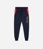Alta jogger in navy and red. Features skinny fit, large left leg branding, elasticated waistband and cuffs. Pair with hood or alta tee.