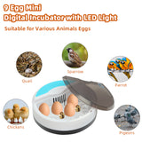 9 Egg Incubator, Mini Hatcher Digital Temperature Control with LED Light & Auto Turning, Poultry Hatcher Machine for Small Chicken, Duck Geese, Parrots, Pigeons.