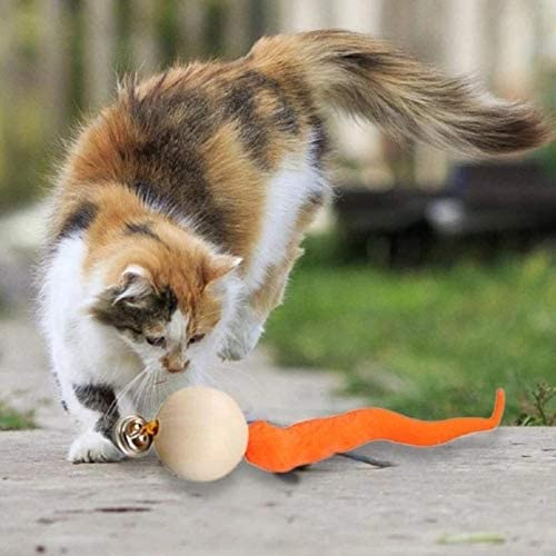 Cat Ball Toy (Free Shipping)