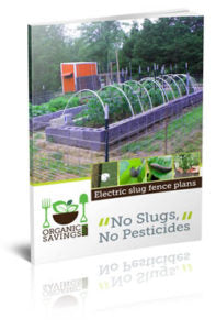 Electric Slug and Pest Fence (eBook)