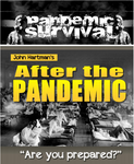 Pandemic Survival: After the Pandemic (eBook)