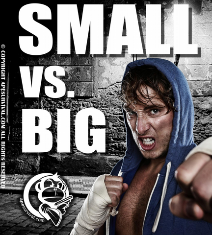 Small VS. Big The Self Defense Guide (eBook)