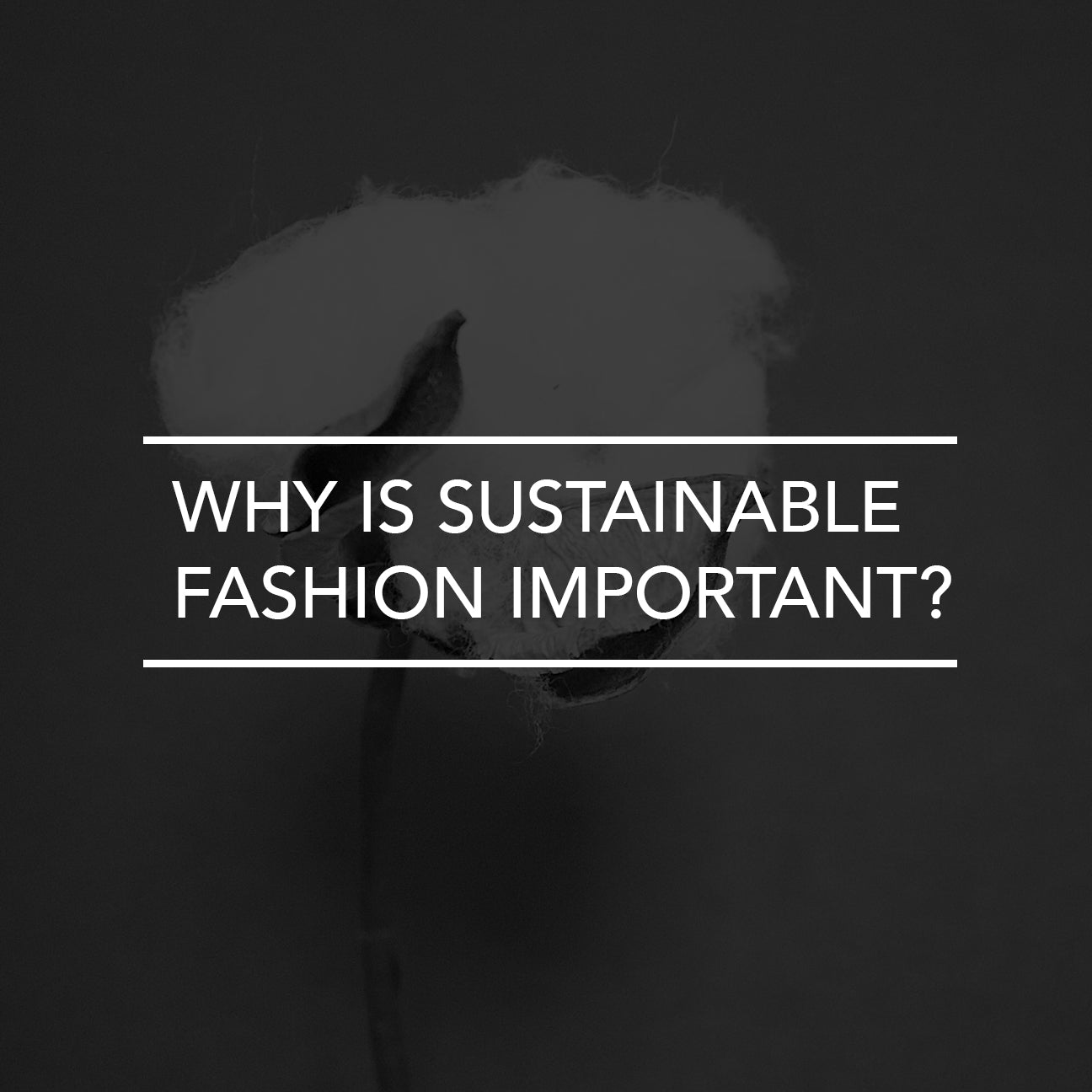 Why is Sustainable Fashion Important?