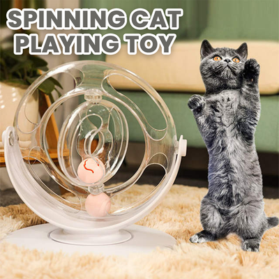 Spinning Cat Playing Toy