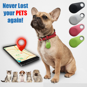 Dogs GPS Tracker & Activity Monitor