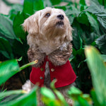 3 tone Brown Faux Fur Trench Coat in Maroon - The Pet's Couture