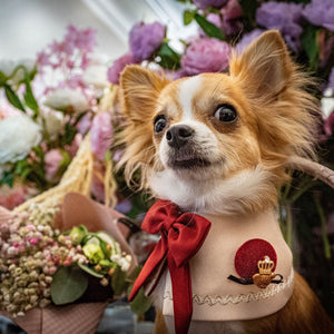 Duchess Capes - Cardinal - The Pet's Couture