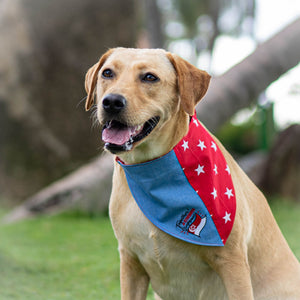 ND 2020 <Together A Stronger Singapore> Pet Bandana in Unity Blue - The Pet's Couture
