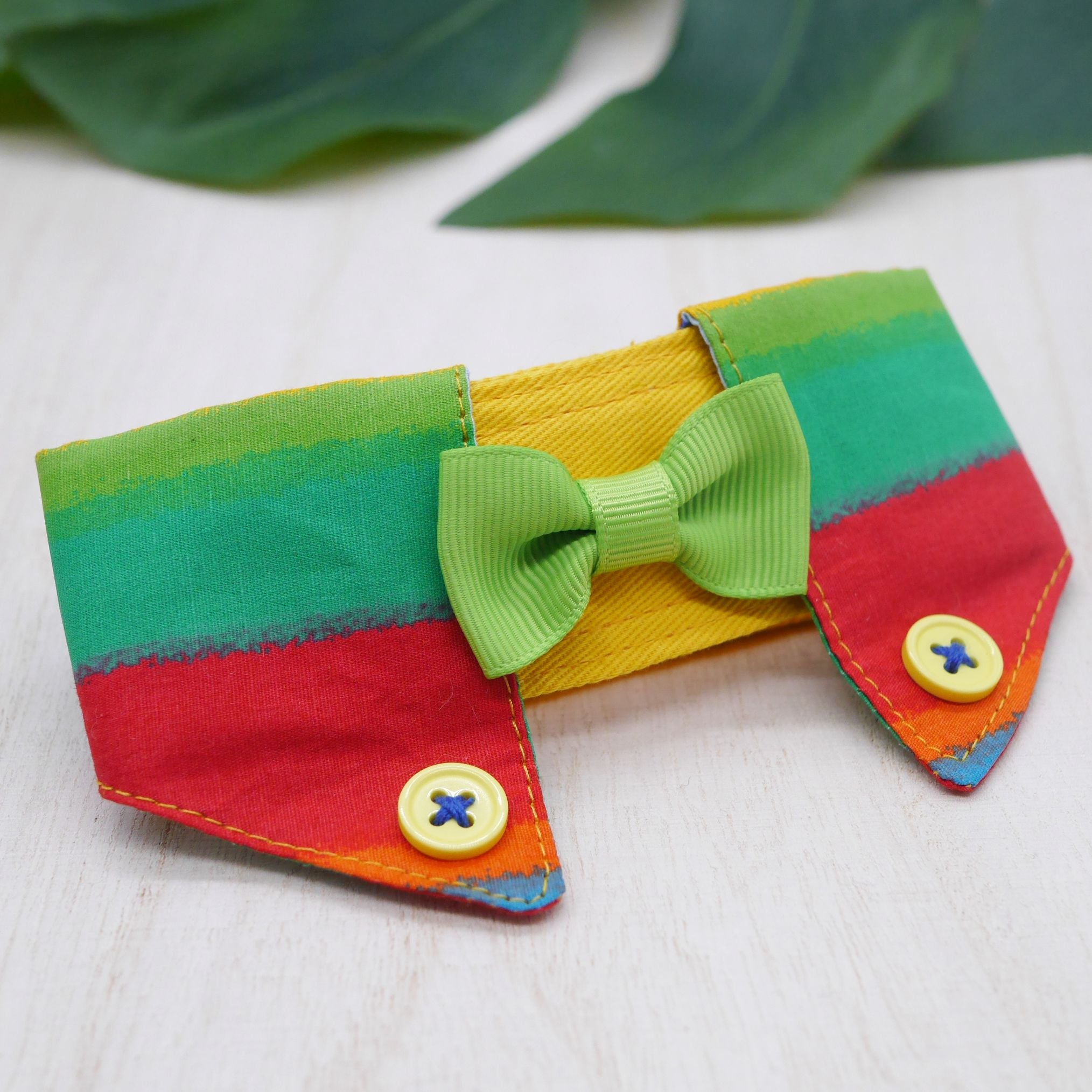 Dapper Collar - Rainbow Kiss - The Pet's Couture