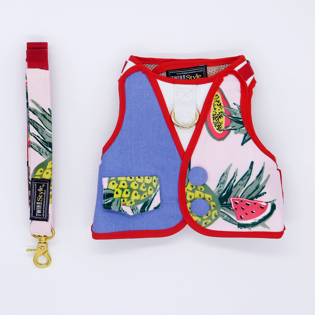 Tropical Fruits with Half Denim Print Harness Leash Set - Twin In Style (Unisex) - The Pet's Couture