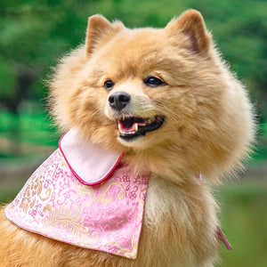 Spring Of Love in Golden Baby Pink CNY Cape (Ready Stock) - The Pet's Couture