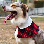 Capes - Cream Collar with Burgundy Tartan Prints - The Pet's Couture