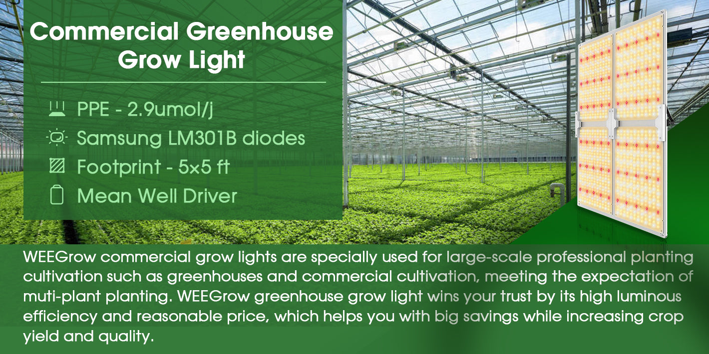 Commercial Greenhouse Grow Light banner