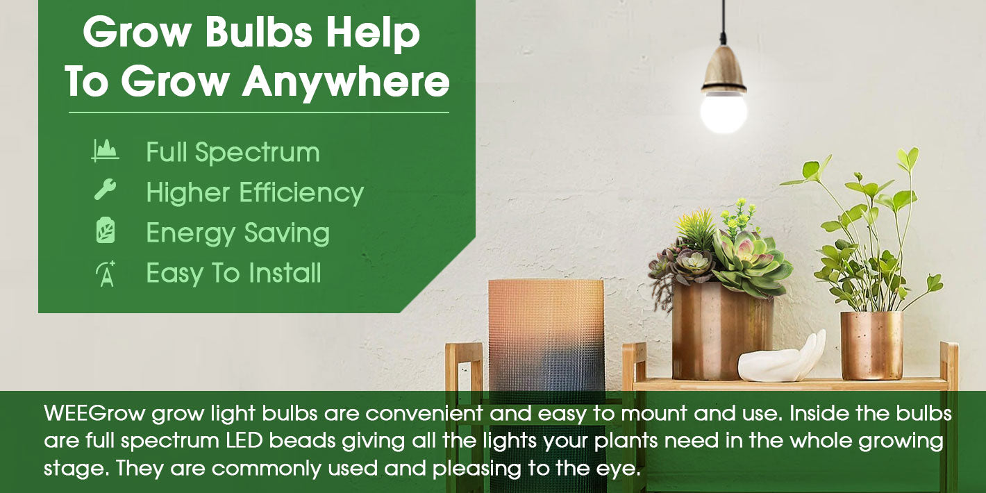 WEEGrow grow light bulbs are convenient and easy to mount and use. Inside the bulbs are full spectrum LED beads giving all the lights your plants need in the whole growing stage. They are commonly used and pleasing to the eye.