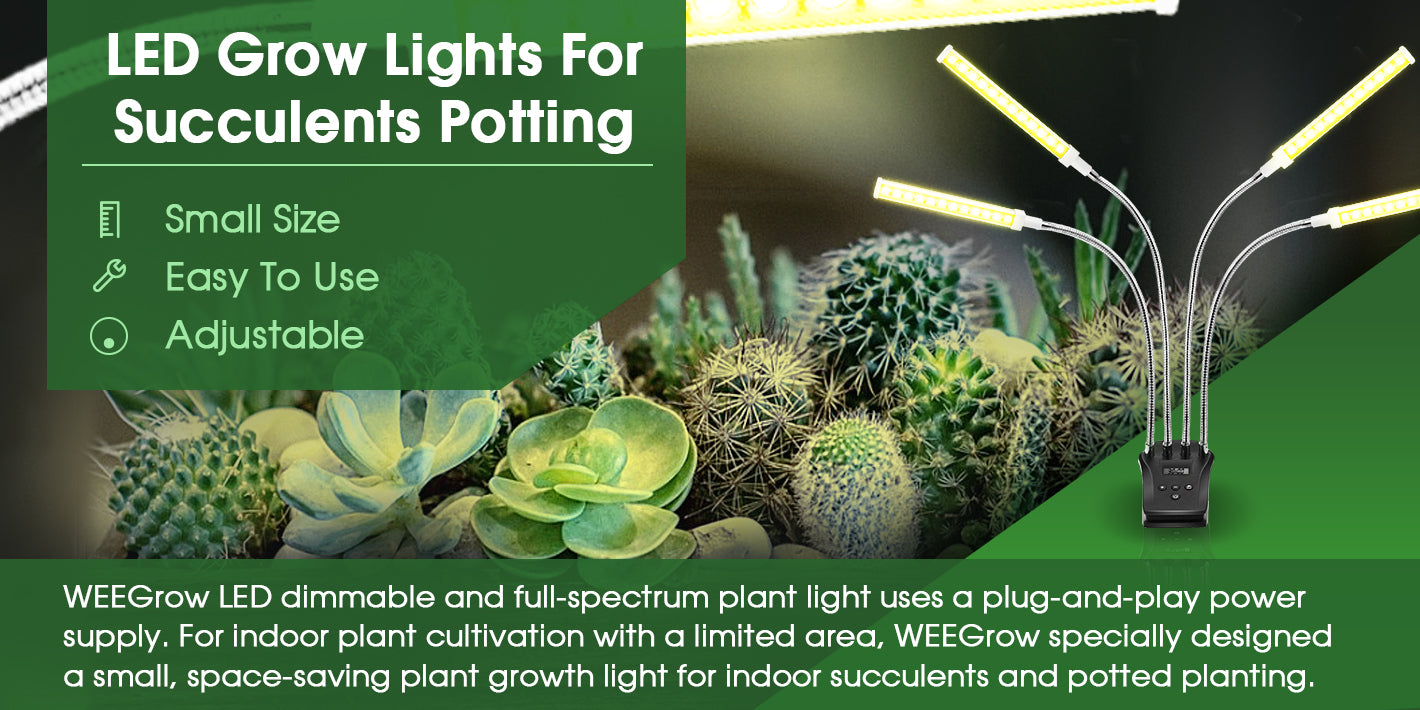 LED Grow lights For Succulents Potting