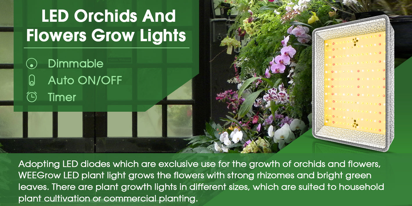 LED Orchids And Flowers Grow Lights Banner