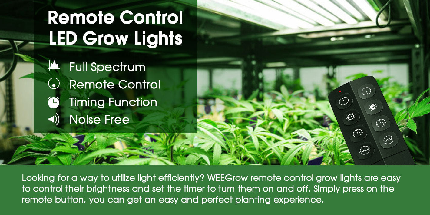 Looking for a way to utilize light efficiently? WEEGrow remote control grow lights are easy to control their brightness and set the timer to turn them on and off. Simply press on the remote button, you can get an easy and perfect planting experience.