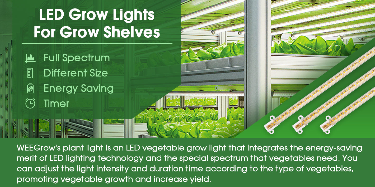 WEEGrow's plant light is an LED vegetable grow light that integrates the energy-saving merit of LED lighting technology and the special spectrum that vegetables need. You can adjust the light intensity and duration time according to the type of vegetables, promoting vegetable growth and increase yield.