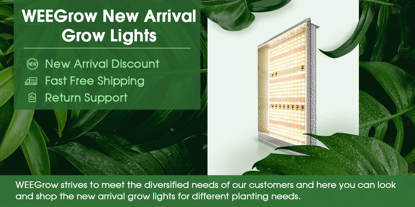 WEEGrow strives to meet the diversified needs of our customers and here you can look and shop the new arrival grow lights for different planting needs.