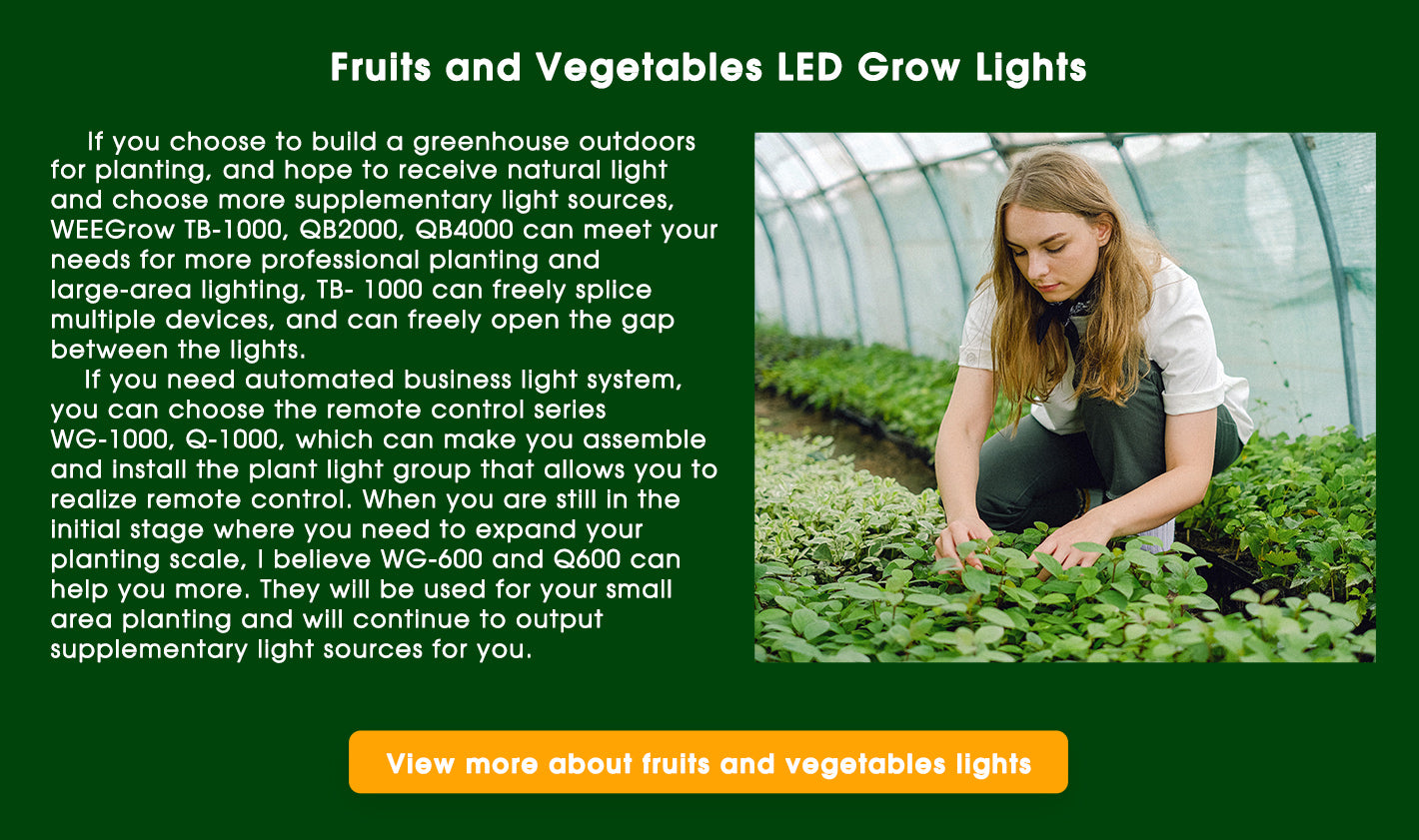 WEEGrow fruits and vegetables LED grow lights