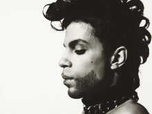 Load image into Gallery viewer, Prince