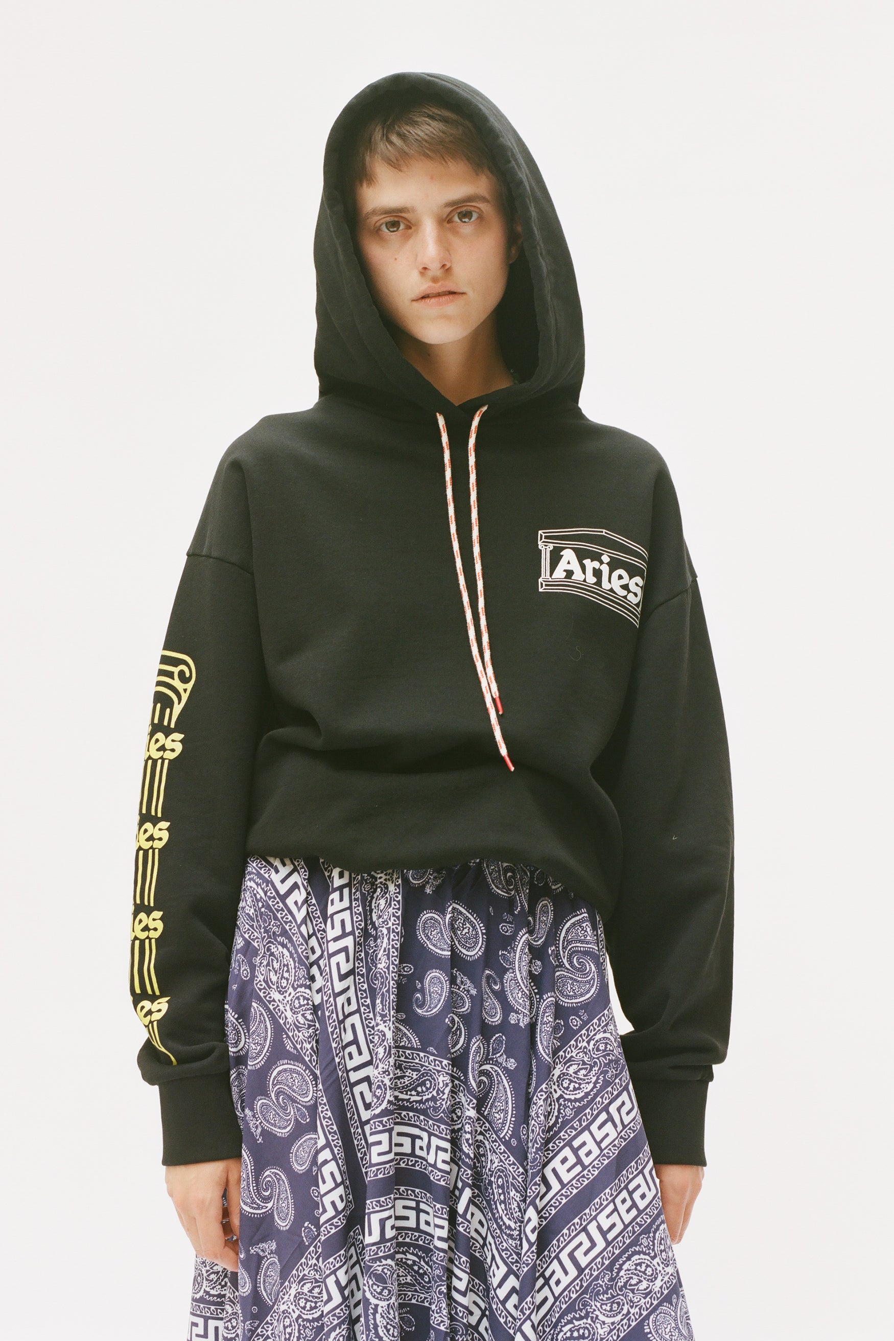 Load image into Gallery viewer, Temple Hoodie