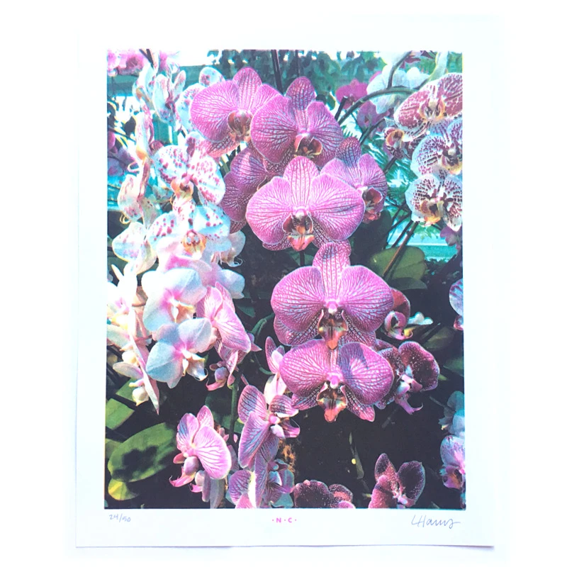 Orchid Spray 4-Color Risograph Print