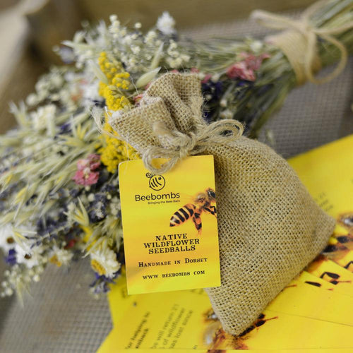 Christmas Native Wildflower Beebombs (1 pack) - Purpledaisy At Home