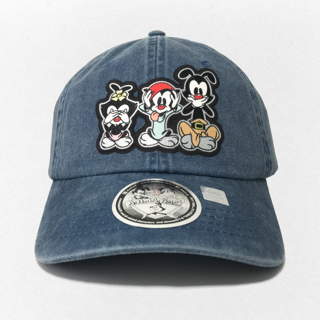 Gorra Animaniacs Logo Hermanos Warner