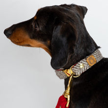 Load image into Gallery viewer, Luxury Adjustable Collar