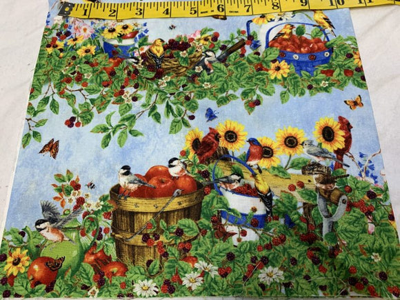 Berry Patch Birds and Sunflowers 217
