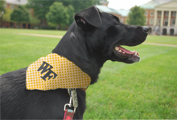 WF Argyle Dog Scarf