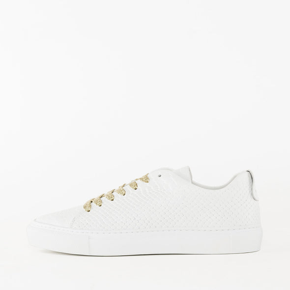 Low top lace-up sneakers in white crocodile-embossed leather with rubber sole and gold glittery laces