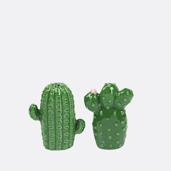 Cactus salt & pepper shakers to shake it up with everyone's favourite table essentials.