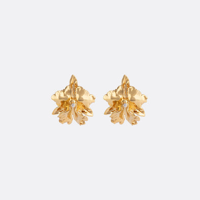 Cattleya Orchid Earrings